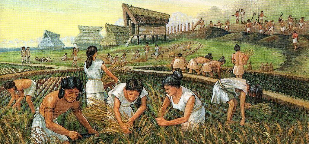 Tarım Devrimi, Yerleşik Hayata Geçiş | Agricultura