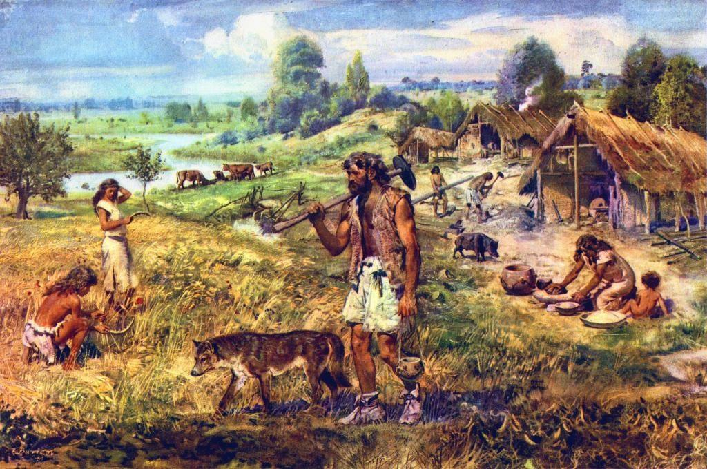 AGRICULTURAL REVOLUTION | Yerleşik Hayata Geçişin Başlangıcı ve Tarım Devrimi